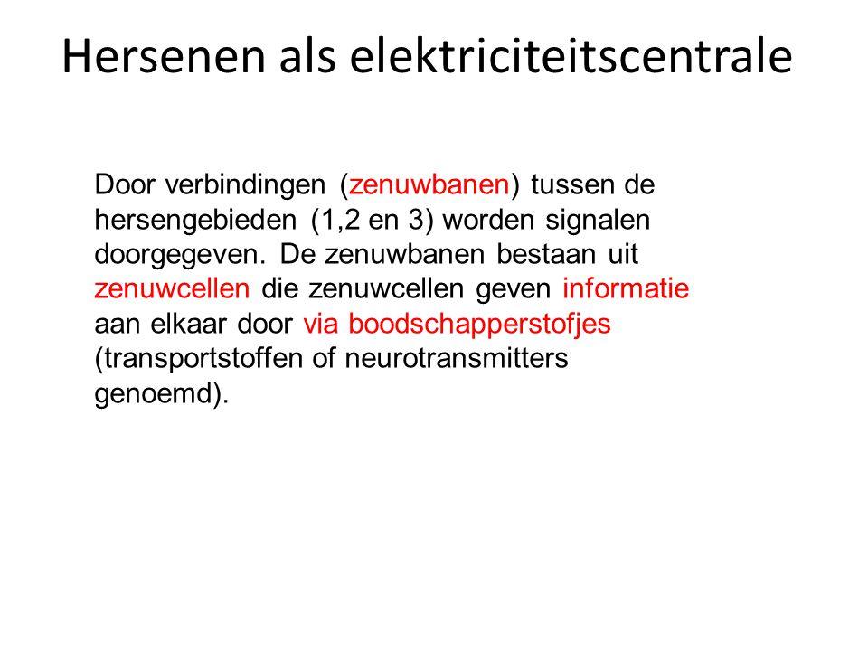 Hersenen als elektriciteitscentrale Door verbindingen (zenuwbanen) tussen de hersengebieden (1,2 en 3) worden signalen doorgegeven.