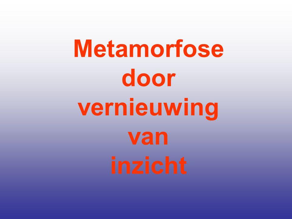 Metamorfose door vernieuwing van inzicht