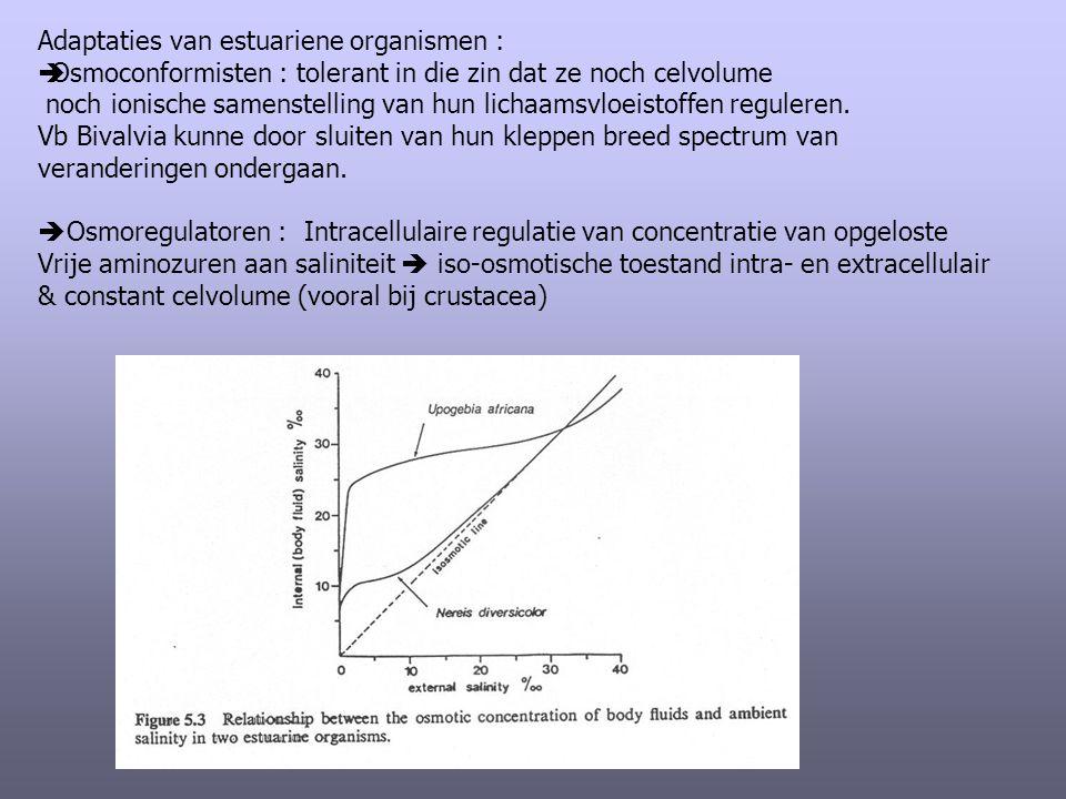 Adaptaties van estuariene organismen :  Osmoconformisten : tolerant in die zin dat ze noch celvolume noch ionische samenstelling van hun lichaamsvloe