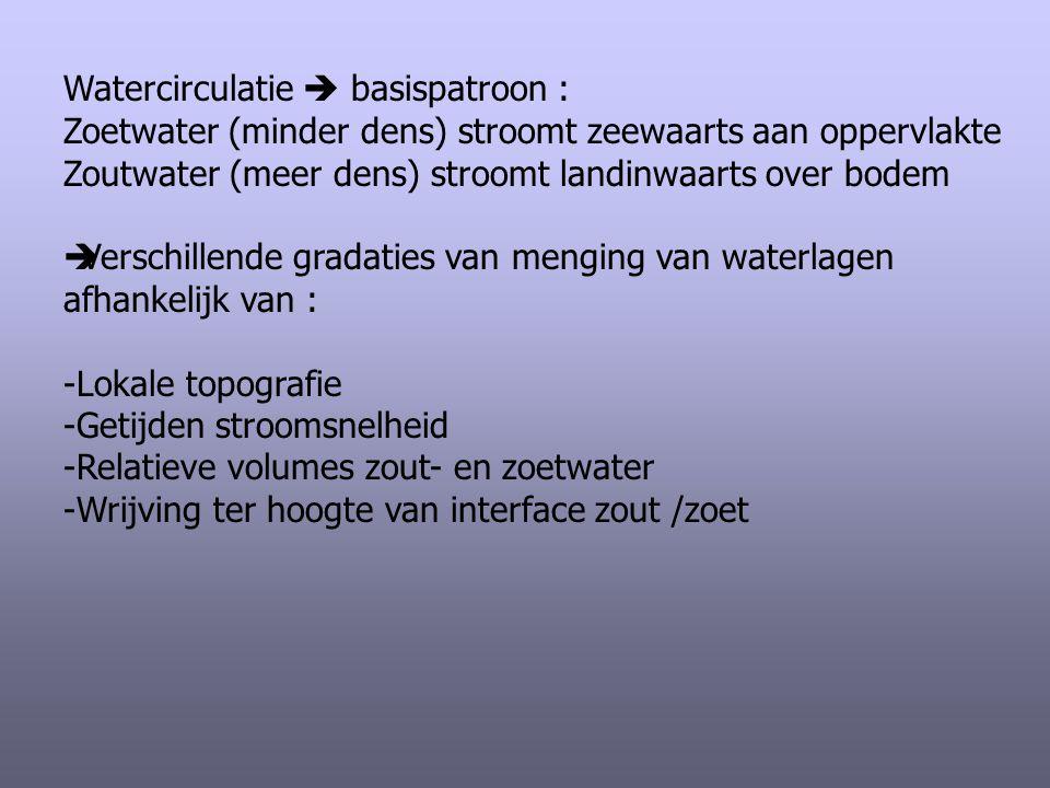 Watercirculatie  basispatroon : Zoetwater (minder dens) stroomt zeewaarts aan oppervlakte Zoutwater (meer dens) stroomt landinwaarts over bodem  Ver