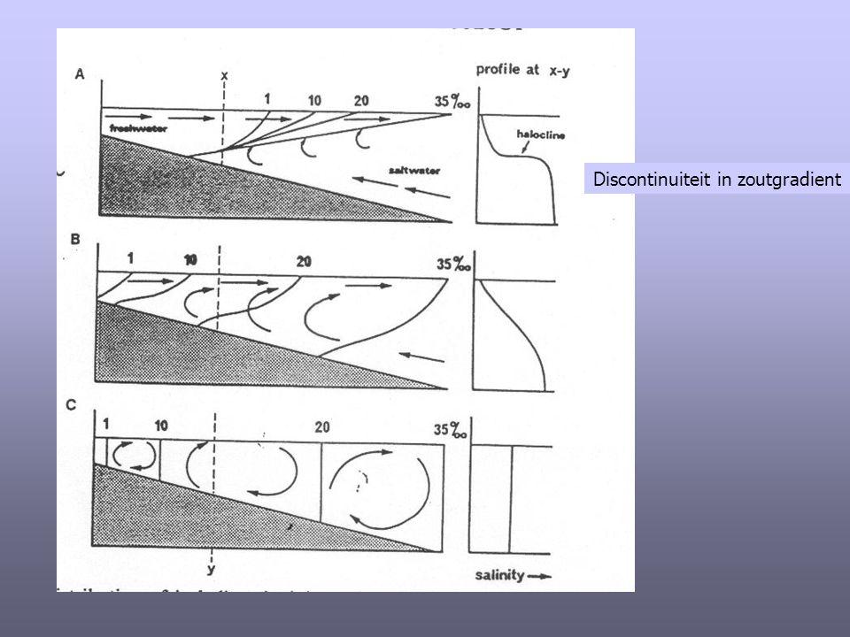 Op basis van saliniteit en densiteit :  Goed gemengde estuaria : geen verschil in saliniteit tussen oppervlakte en bodem door sterke menging (zeewaartse nettostroming op alle diepten).