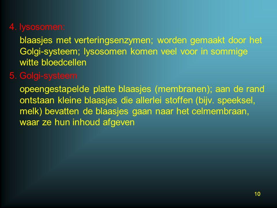 4. lysosomen: blaasjes met verteringsenzymen; worden gemaakt door het Golgi-systeem; lysosomen komen veel voor in sommige witte bloedcellen 5. Golgi-s