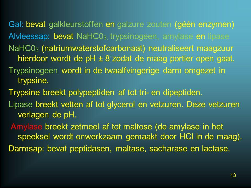 Gal: bevat galkleurstoffen en galzure zouten (géén enzymen) Alvleessap: bevat NaHC0 3, trypsinogeen, amylase en lipase NaHC0 3 (natriumwaterstofcarbonaat) neutraliseert maagzuur hierdoor wordt de pH ± 8 zodat de maag portier open gaat.