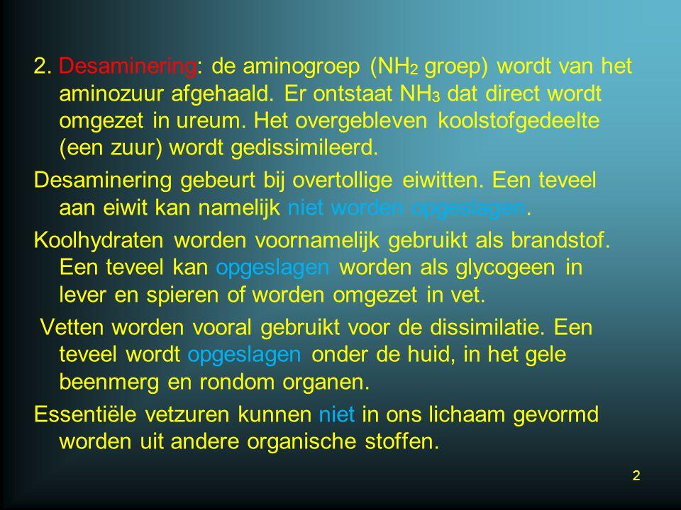 2. Desaminering: de aminogroep (NH 2 groep) wordt van het aminozuur afgehaald. Er ontstaat NH 3 dat direct wordt omgezet in ureum. Het overgebleven ko