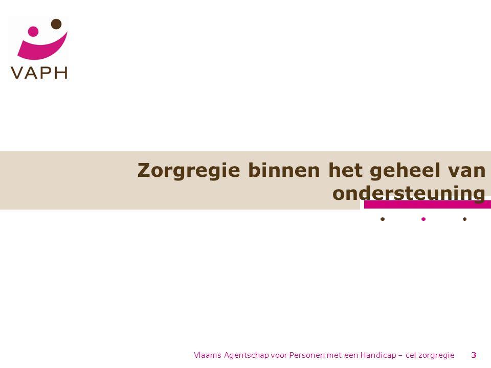 Zorgregie binnen het geheel van ondersteuning Vlaams Agentschap voor Personen met een Handicap – cel zorgregie3