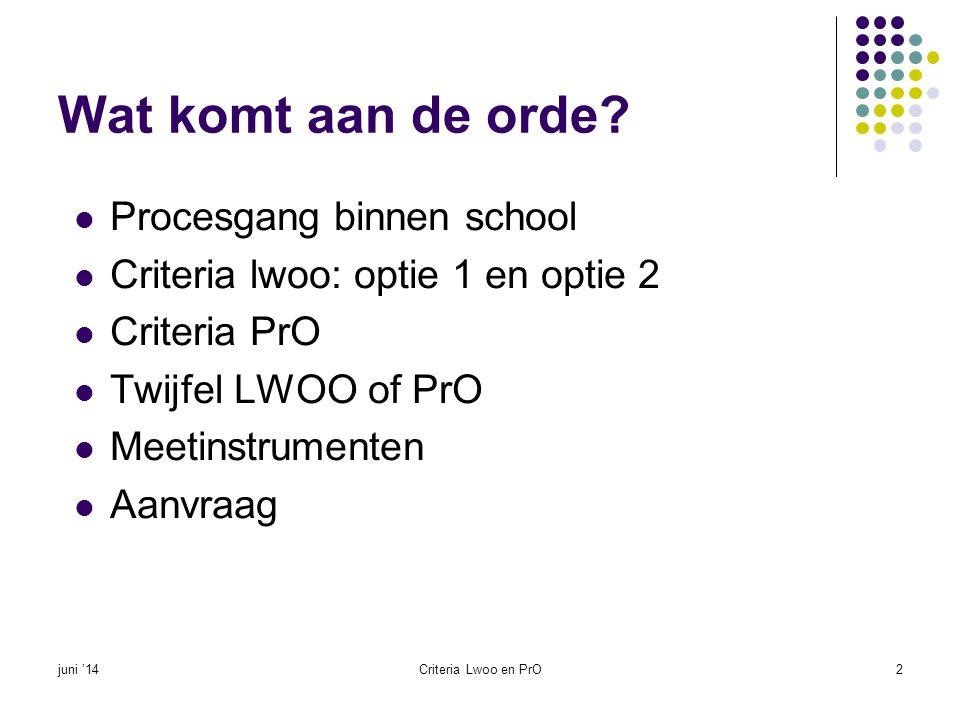 Wat komt aan de orde?  Procesgang binnen school  Criteria lwoo: optie 1 en optie 2  Criteria PrO  Twijfel LWOO of PrO  Meetinstrumenten  Aanvraa
