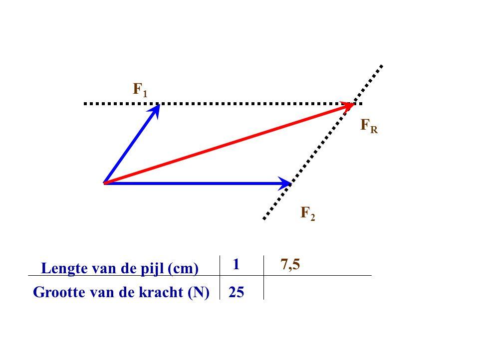 Lengte van de pijl (cm) Grootte van de kracht (N) 1 25 7,5 FRFR F2F2 F1F1
