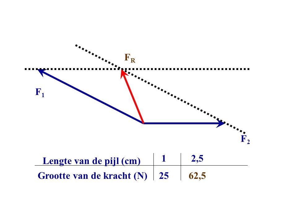 F2F2 F1F1 FRFR Grootte van de kracht (N) Lengte van de pijl (cm) 1 25 2,5 62,5