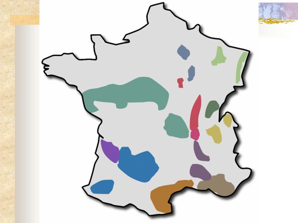 Bourgogne : ligging & indeling  Begint t.h.v.