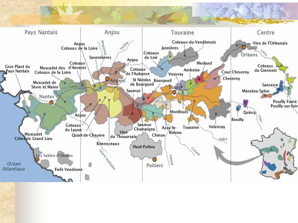 Drie grote wijngebieden  Boven-Loire : met als bekendste Sancerre en Pouilly.