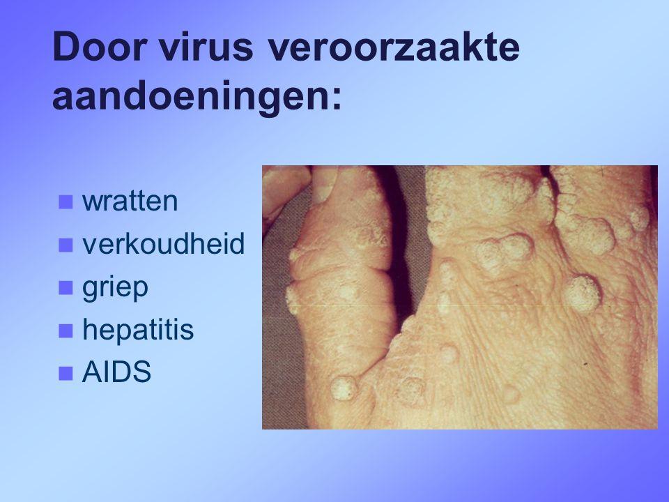 Door virus veroorzaakte aandoeningen:  wratten  verkoudheid  griep  hepatitis  AIDS
