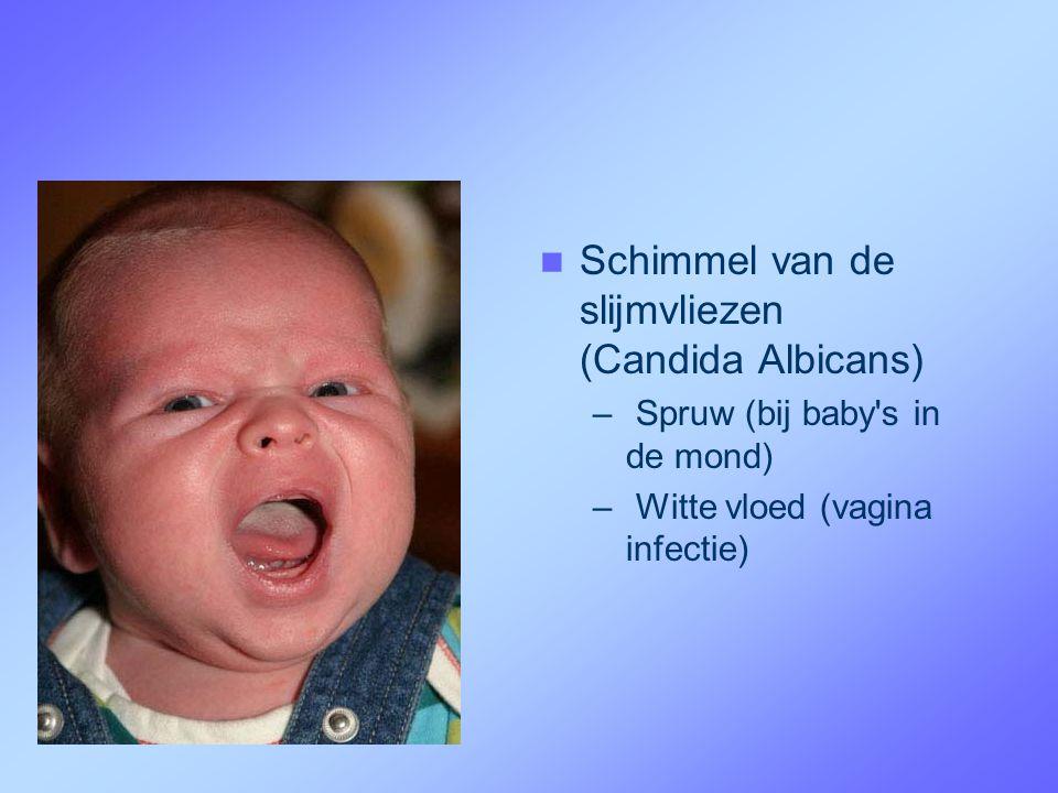  Schimmel van de slijmvliezen (Candida Albicans) – Spruw (bij baby's in de mond) – Witte vloed (vagina infectie)