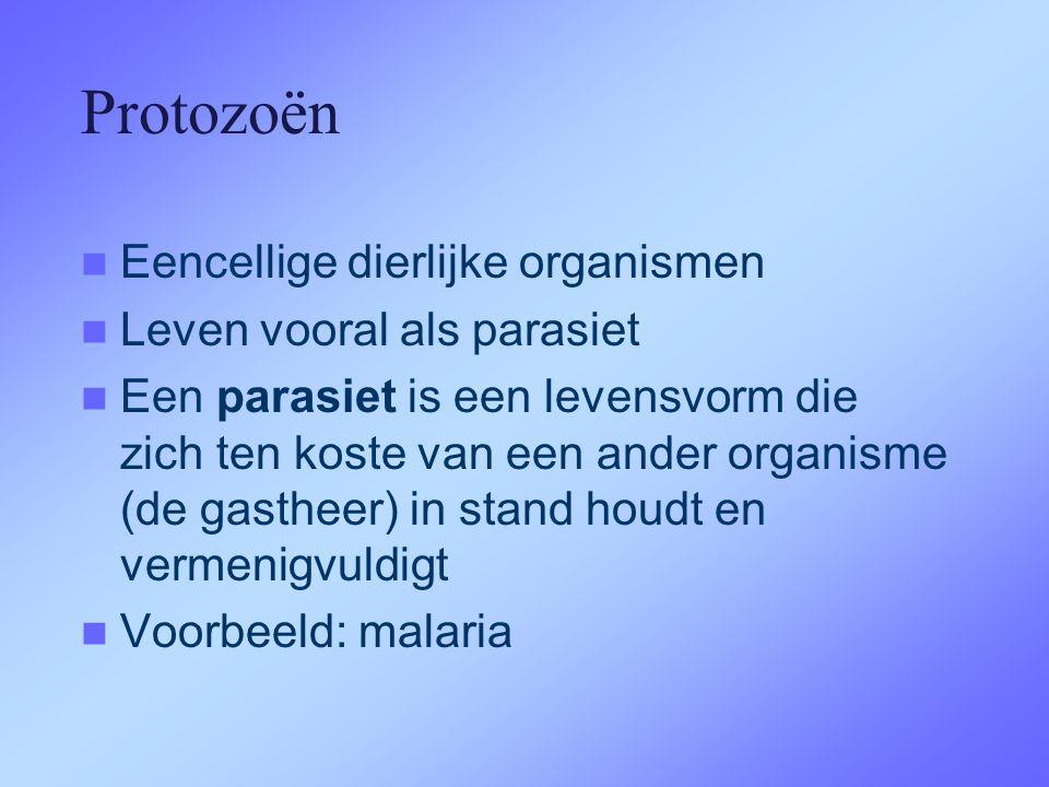 Protozoën  Eencellige dierlijke organismen  Leven vooral als parasiet  Een parasiet is een levensvorm die zich ten koste van een ander organisme (de gastheer) in stand houdt en vermenigvuldigt  Voorbeeld: malaria