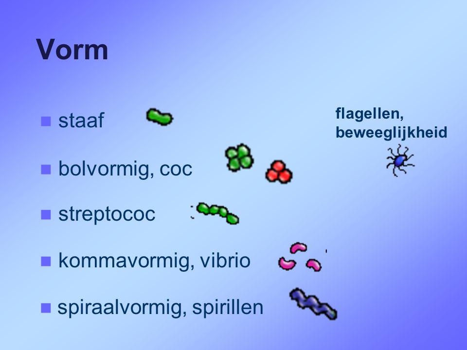 Vorm  spiraalvormig, spirillen   bolvormig, coc   streptococ   staaf   kommavormig, vibrio flagellen, beweeglijkheid