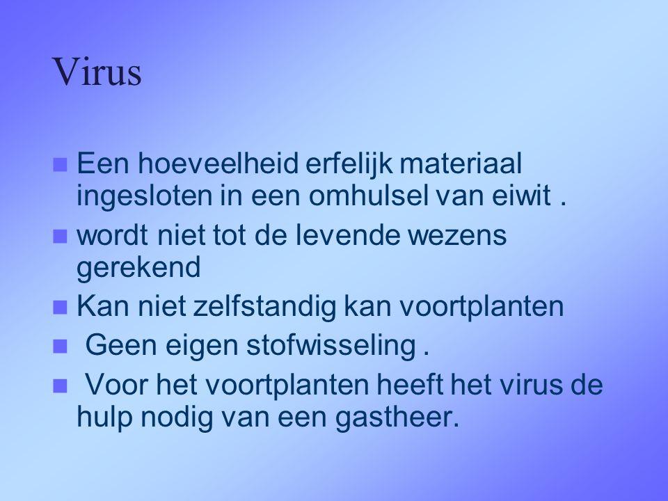 Virus  Een hoeveelheid erfelijk materiaal ingesloten in een omhulsel van eiwit.  wordt niet tot de levende wezens gerekend  Kan niet zelfstandig ka
