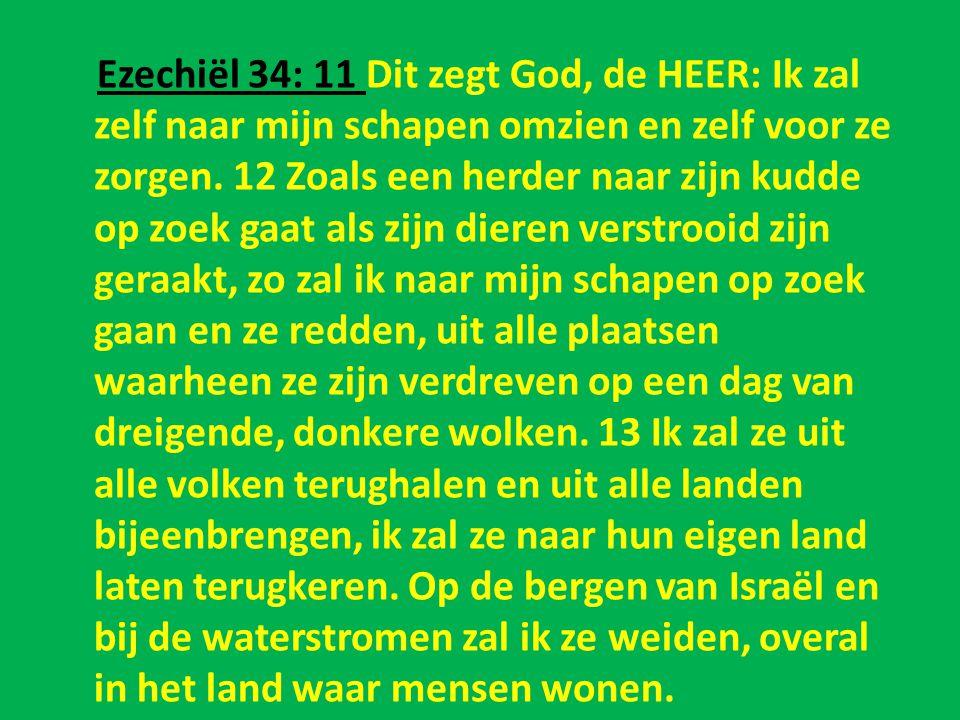Ezechiël 34: 11 Dit zegt God, de HEER: Ik zal zelf naar mijn schapen omzien en zelf voor ze zorgen. 12 Zoals een herder naar zijn kudde op zoek gaat a