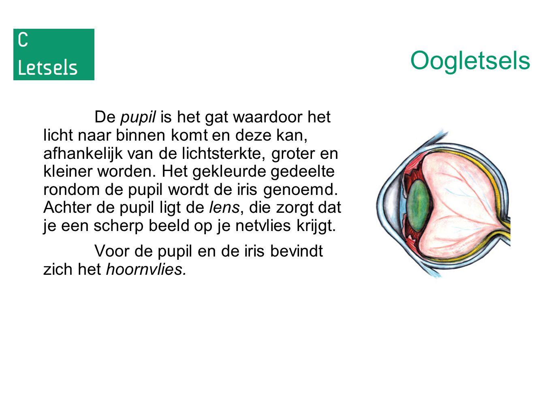 Oogletsels De pupil is het gat waardoor het licht naar binnen komt en deze kan, afhankelijk van de lichtsterkte, groter en kleiner worden. Het gekleur