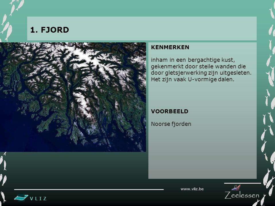 V L I Z www.vliz.be Zeelessen KENMERKEN inham in een bergachtige kust, gekenmerkt door steile wanden die door gletsjerwerking zijn uitgesleten.