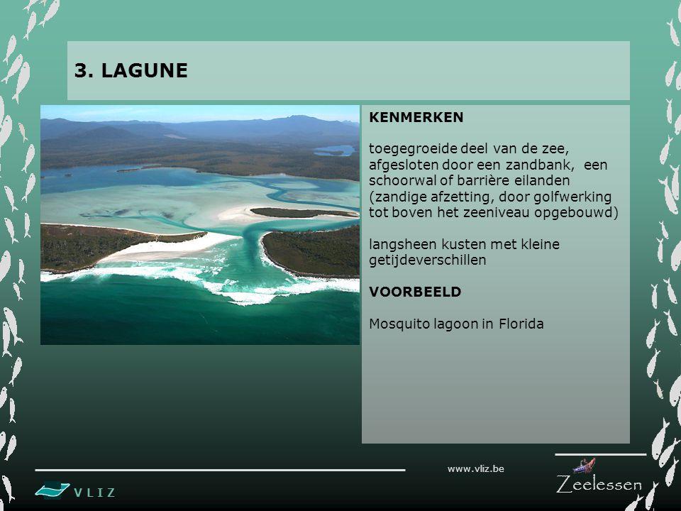 V L I Z www.vliz.be Zeelessen KENMERKEN toegegroeide deel van de zee, afgesloten door een zandbank, een schoorwal of barrière eilanden (zandige afzetting, door golfwerking tot boven het zeeniveau opgebouwd) langsheen kusten met kleine getijdeverschillen VOORBEELD Mosquito lagoon in Florida 3.