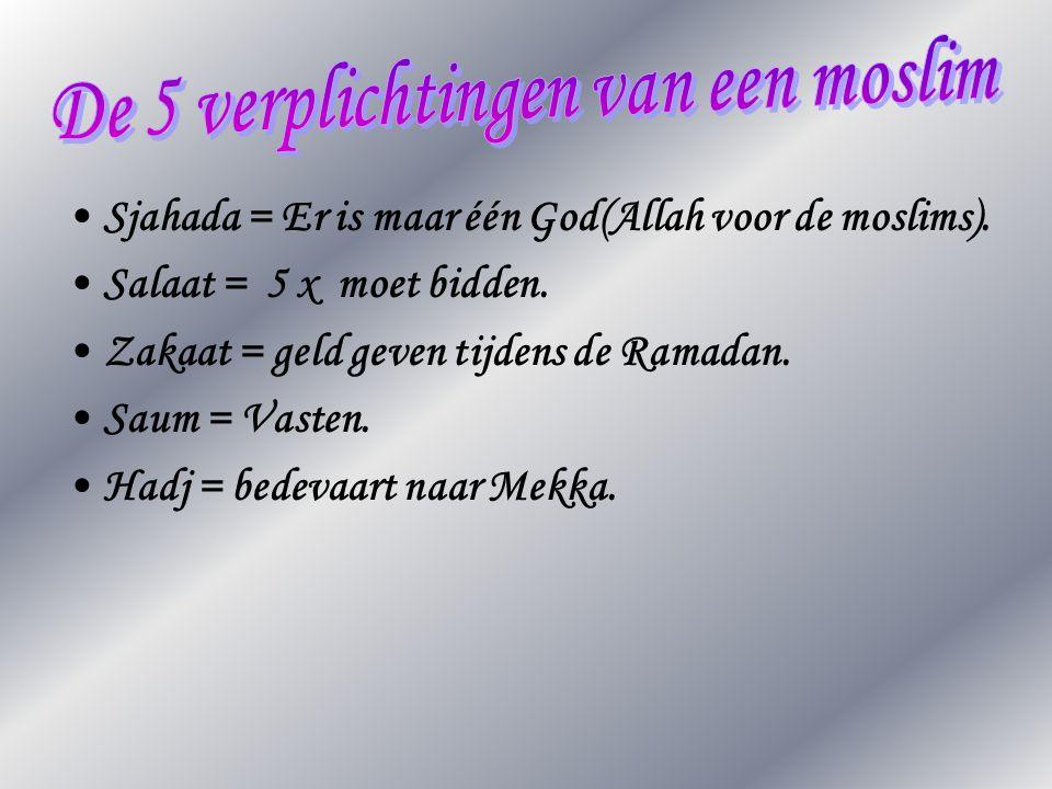 •Sjahada = Er is maar één God(Allah voor de moslims). •Salaat = 5 x moet bidden. •Zakaat = geld geven tijdens de Ramadan. •Saum = Vasten. •Hadj = bede