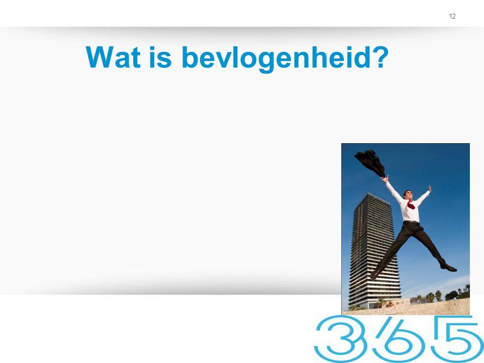 12 Wat is bevlogenheid?