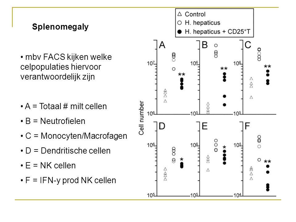 Splenomegaly • mbv FACS kijken welke celpopulaties hiervoor verantwoordelijk zijn • A = Totaal # milt cellen • B = Neutrofielen • C = Monocyten/Macrofagen • D = Dendritische cellen • E = NK cellen • F = IFN-y prod NK cellen