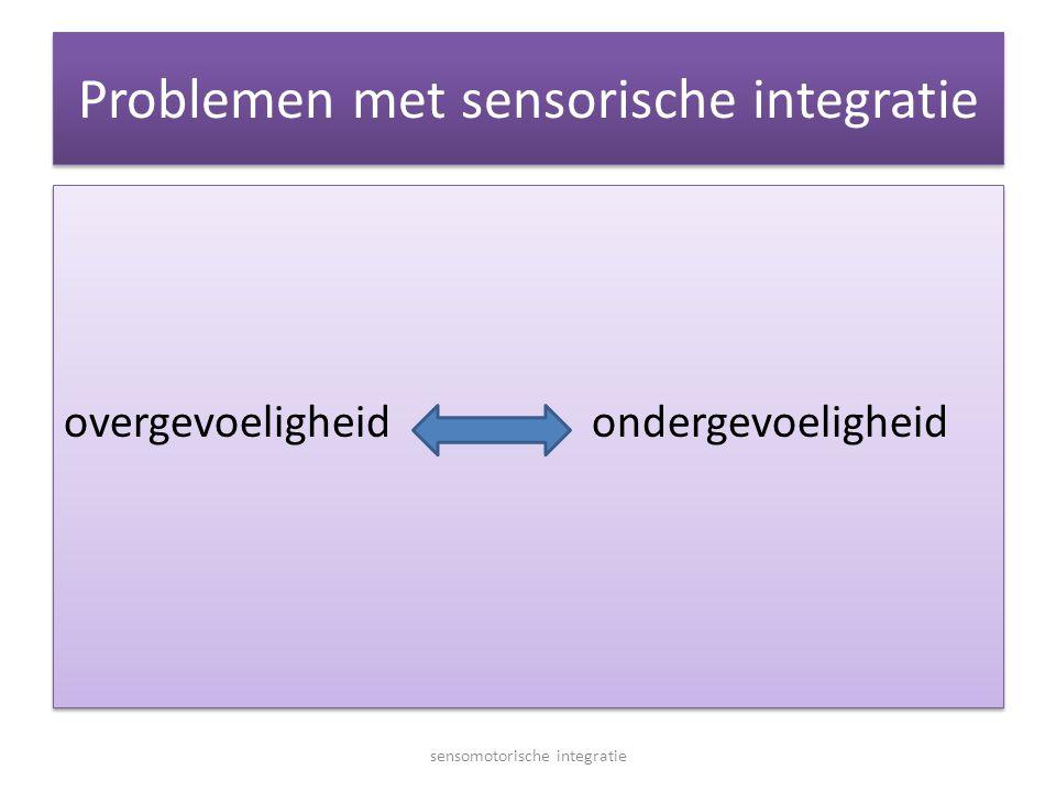 Problemen met sensorische integratie overgevoeligheidondergevoeligheid sensomotorische integratie