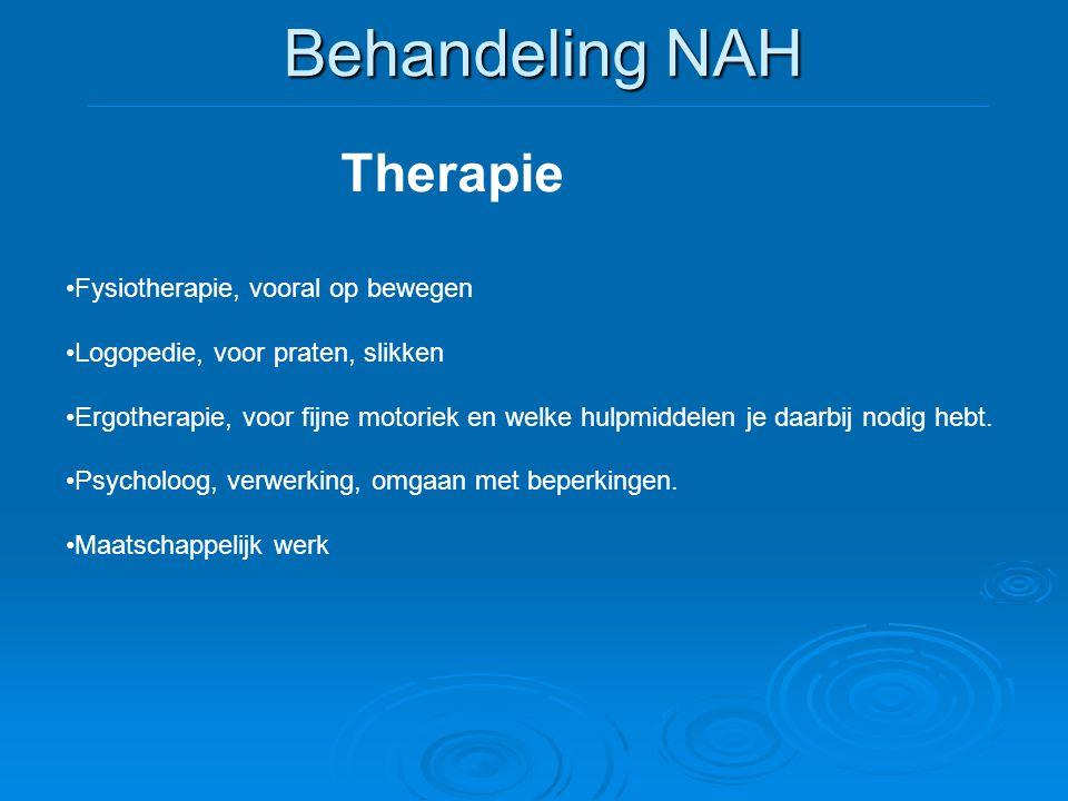 Behandeling NAH Therapie •Fysiotherapie, vooral op bewegen •Logopedie, voor praten, slikken •Ergotherapie, voor fijne motoriek en welke hulpmiddelen j