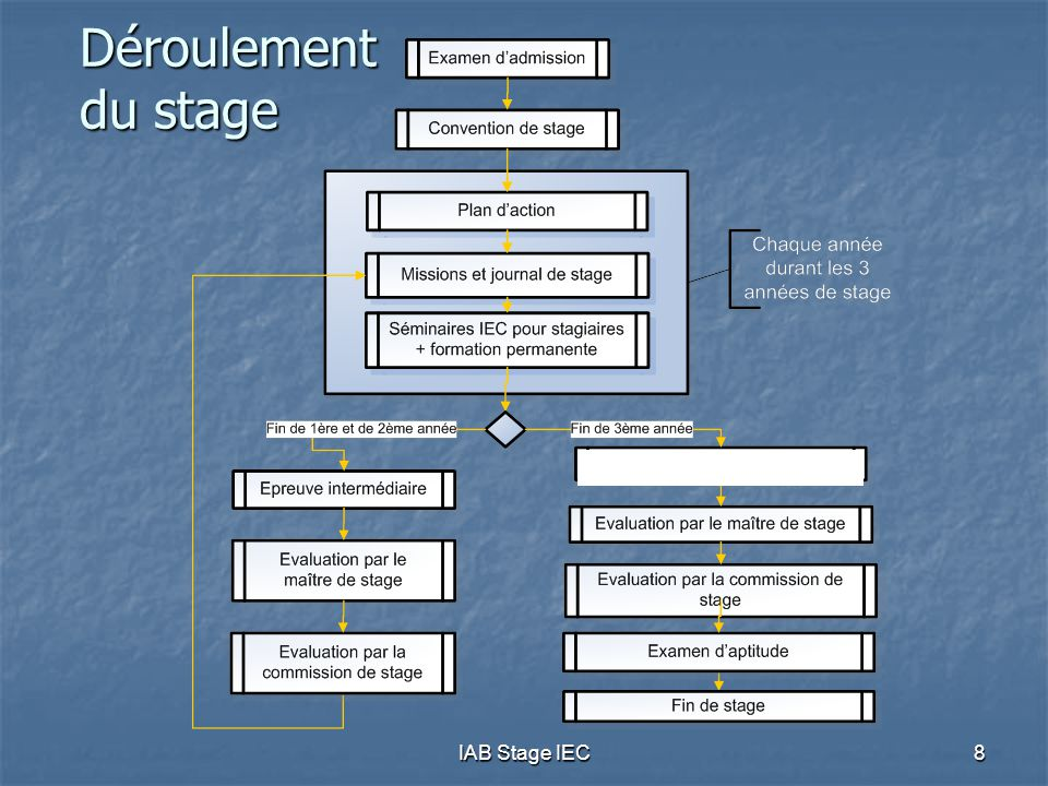 IAB Stage IEC9 Rol stagiair  Moet, in de mate van het mogelijke, eigen stage sturen in functie van vooropgestelde objectieven (pro-actieve houding)  Maakt actieplan op in begin van elk stagejaar;  Registreert opdrachten in on-line stagedagboek;  Kan stagedagboek op elk ogenblik toetsen aan de te behalen objectieven;  Is nog geen lid van het Instituut, maar dient zich aan de plichtenleer en beroepstucht van het IAB te houden