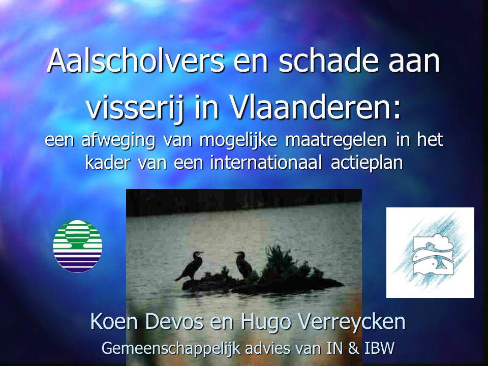 Aalscholvers en schade aan visserij in Vlaanderen: een afweging van mogelijke maatregelen in het kader van een internationaal actieplan Koen Devos en