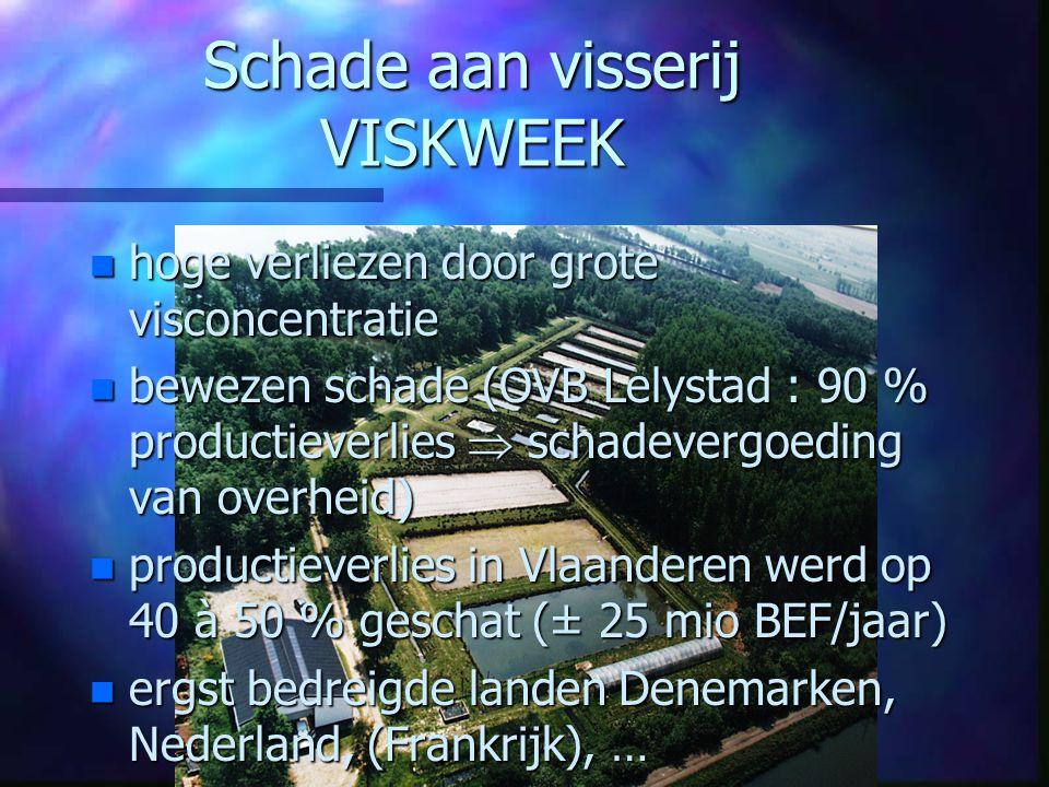Het voorkomen of compenseren van aalscholverschade in Vlaanderen n n 3.