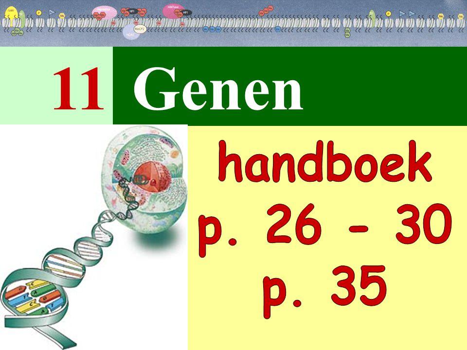 11 Genen