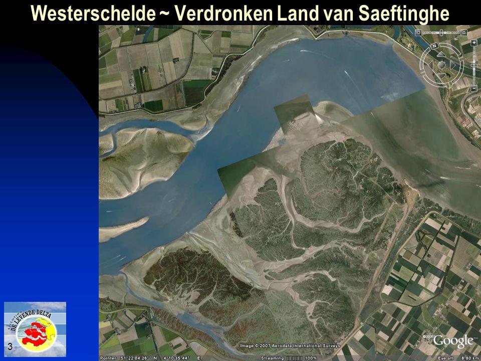 Verdronken Land van Saeftinghe 3 Westerschelde ~ Verdronken Land van Saeftinghe