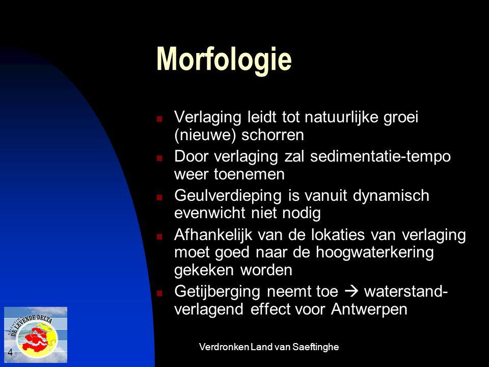 Verdronken Land van Saeftinghe 4 Morfologie  Verlaging leidt tot natuurlijke groei (nieuwe) schorren  Door verlaging zal sedimentatie-tempo weer toe