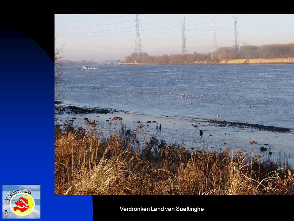 Verdronken Land van Saeftinghe 5