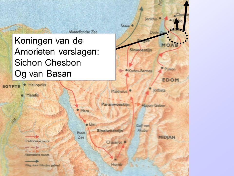 Koningen van de Amorieten verslagen: Sichon Chesbon Og van Basan