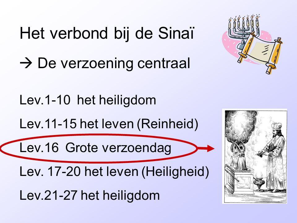 Het verbond bij de Sinaï  De verzoening centraal Lev.1-10 het heiligdom Lev.11-15 het leven (Reinheid) Lev.16 Grote verzoendag Lev. 17-20 het leven (