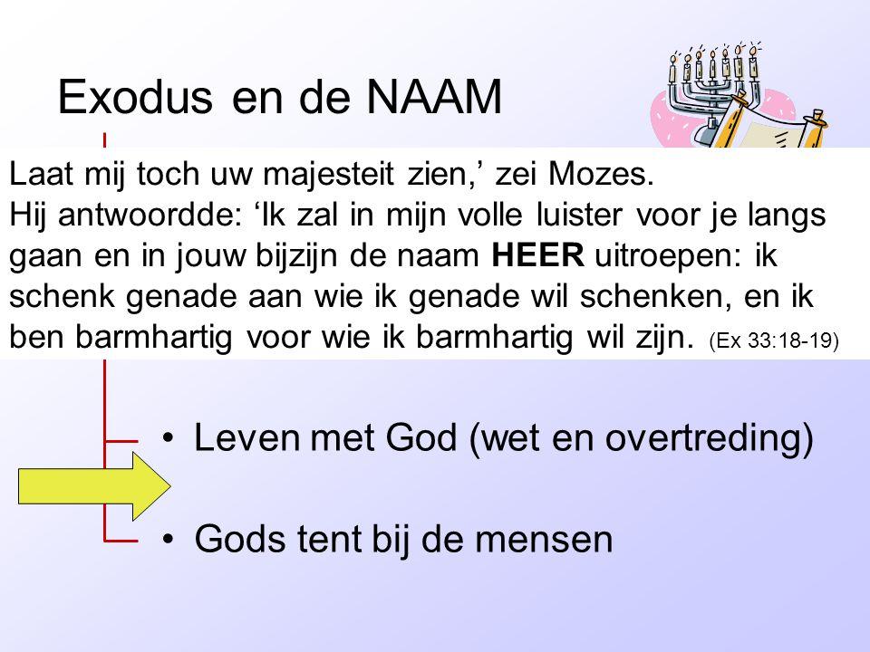 Exodus en de NAAM •Slavernij in Egypte •Bevrijding •Leven met God (wet en overtreding) •Gods tent bij de mensen Laat mij toch uw majesteit zien,' zei