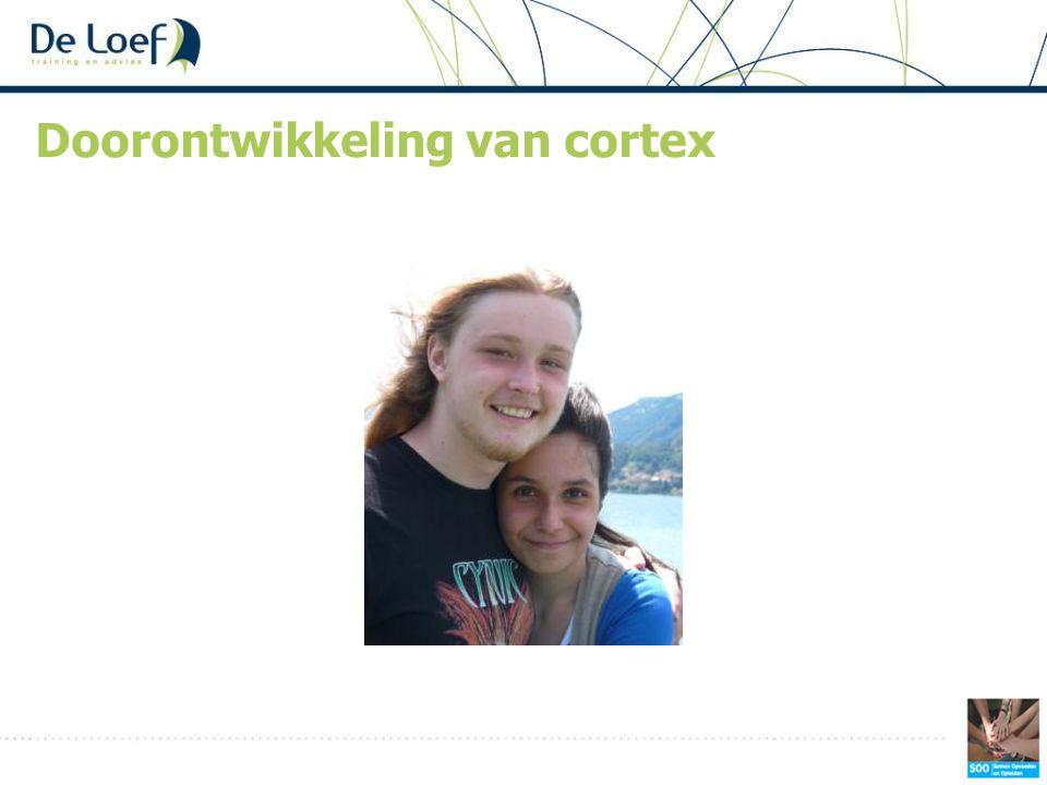 Doorontwikkeling van cortex