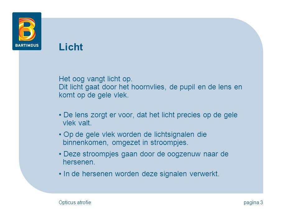 Opticus atrofiepagina 3 Licht Het oog vangt licht op. Dit licht gaat door het hoornvlies, de pupil en de lens en komt op de gele vlek. • De lens zorgt
