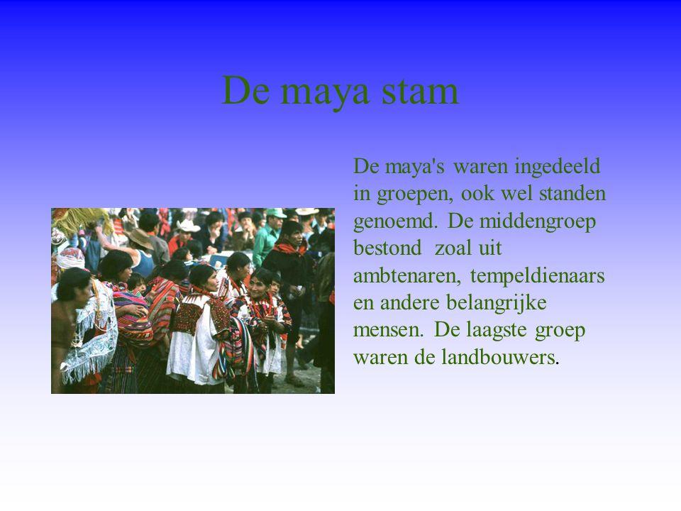 De maya stam De maya s waren ingedeeld in groepen, ook wel standen genoemd.