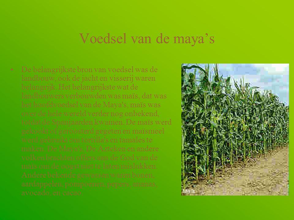 Voedsel van de maya's •De belangrijkste bron van voedsel was de landbouw, ook de jacht en visserij waren belangrijk.