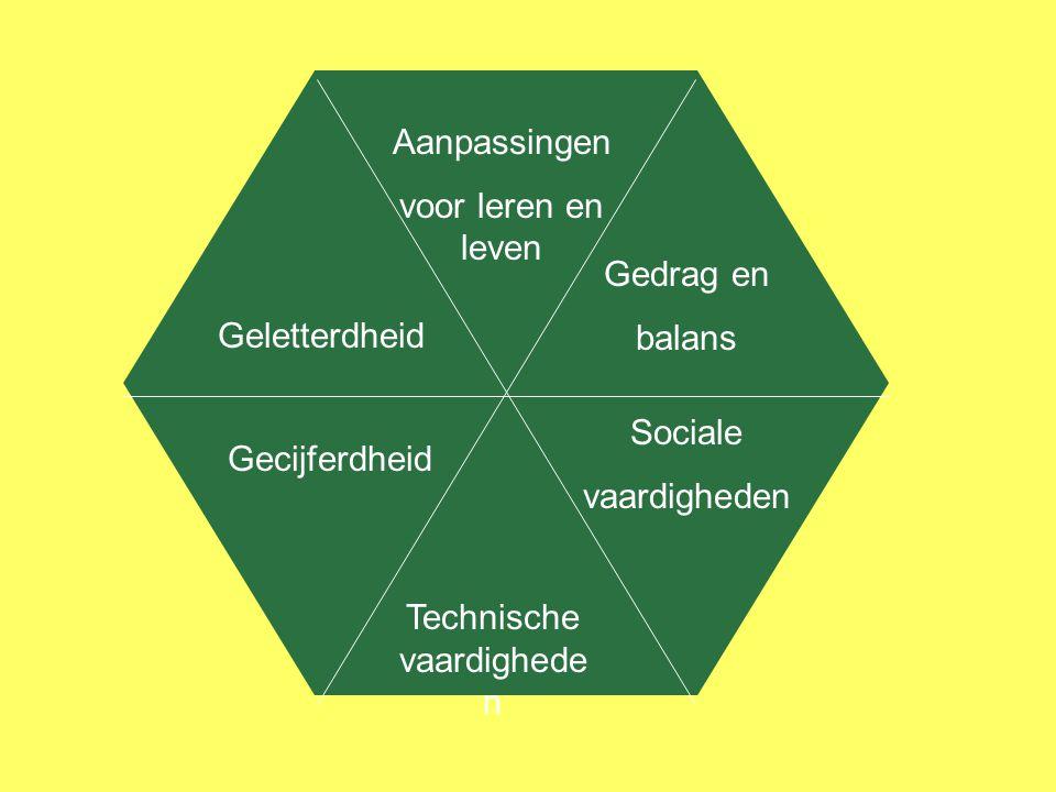 Geletterdheid Gecijferdheid Aanpassingen voor leren en leven Technische vaardighede n Gedrag en balans Sociale vaardigheden