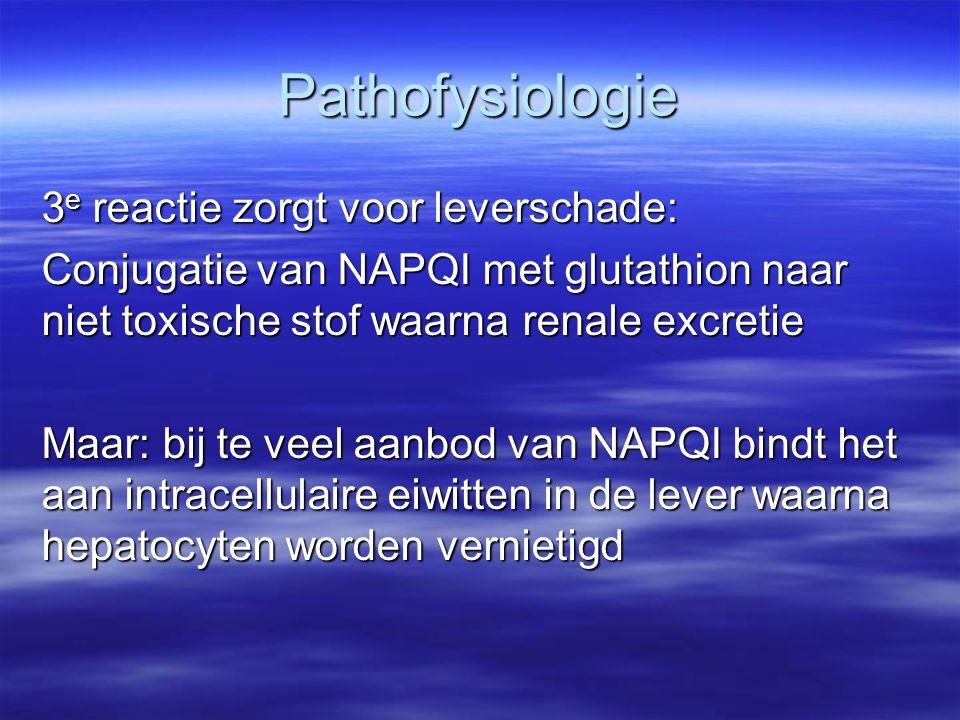 Pathofysiologie 3 e reactie zorgt voor leverschade: Conjugatie van NAPQI met glutathion naar niet toxische stof waarna renale excretie Maar: bij te ve