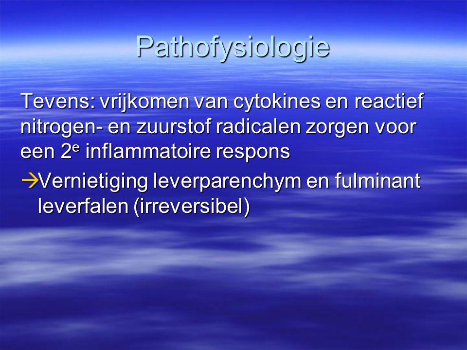 Pathofysiologie Tevens: vrijkomen van cytokines en reactief nitrogen- en zuurstof radicalen zorgen voor een 2 e inflammatoire respons  Vernietiging l
