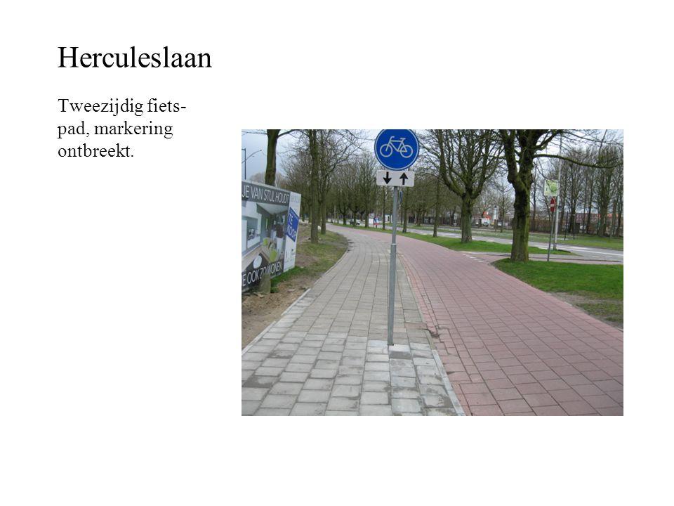 Herculeslaan Tweezijdig fiets- pad, markering ontbreekt.