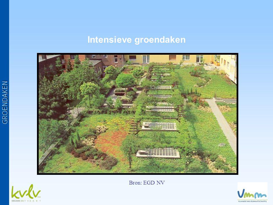 Intensieve groendaken Bron: EGD NV GROENDAKEN