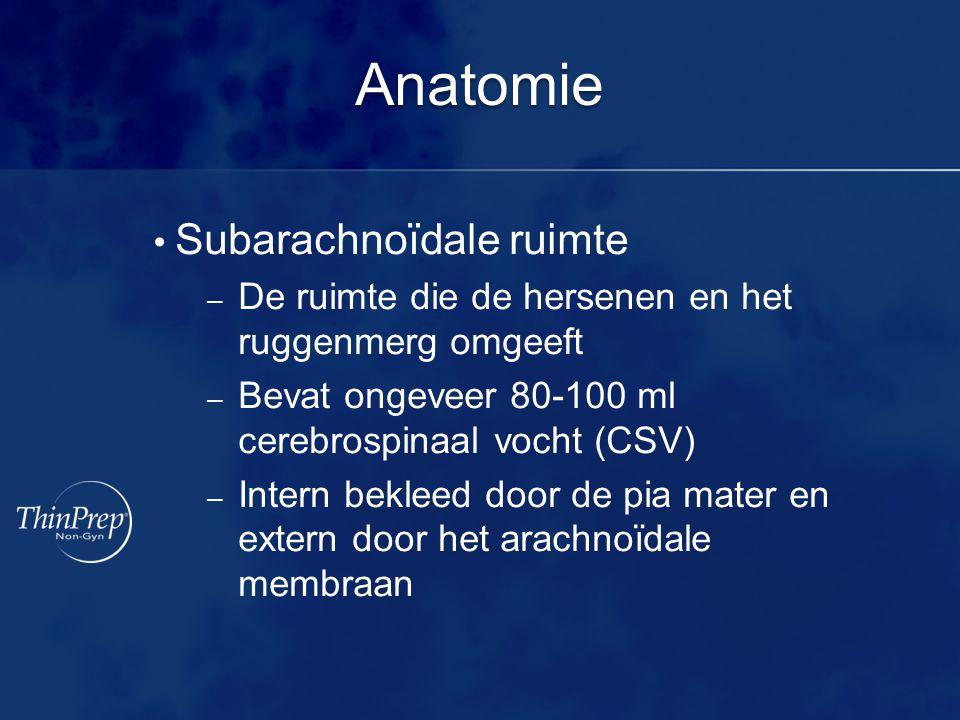 Anatomie • Subarachnoïdale ruimte – De ruimte die de hersenen en het ruggenmerg omgeeft – Bevat ongeveer 80-100 ml cerebrospinaal vocht (CSV) – Intern bekleed door de pia mater en extern door het arachnoïdale membraan