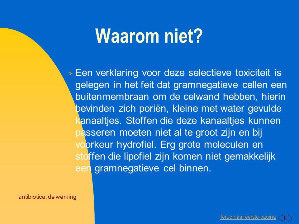 Terug naar eerste pagina antibiotica, de werking Waarom niet? F Een verklaring voor deze selectieve toxiciteit is gelegen in het feit dat gramnegatiev