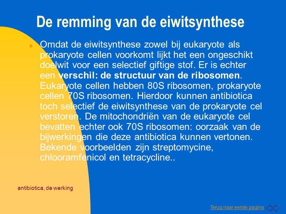 Terug naar eerste pagina antibiotica, de werking De remming van de eiwitsynthese n Omdat de eiwitsynthese zowel bij eukaryote als prokaryote cellen vo